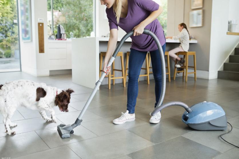 Limpiar con mascotas